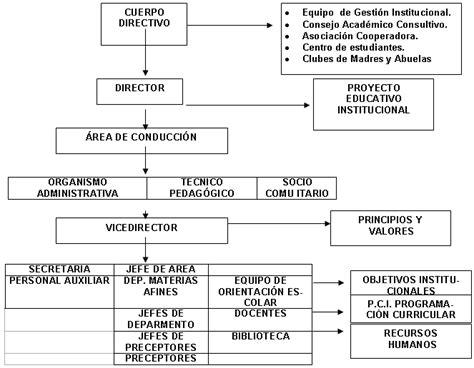 en una organizacion view image papel de los linfocitos t cd4 en la organizaci 243 n y la administraci 243 n escolar