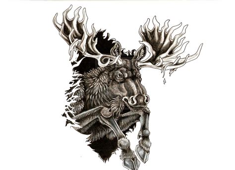 tattoo moose moose skull www imgkid the image kid has it
