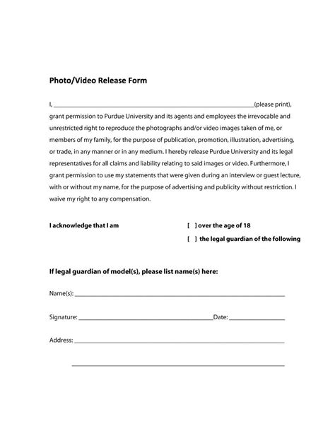 standard release form for video gallery form exle ideas
