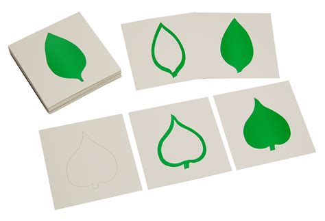 card materials for a card leaf cards cabinet with cards for 18 insets e o montessori