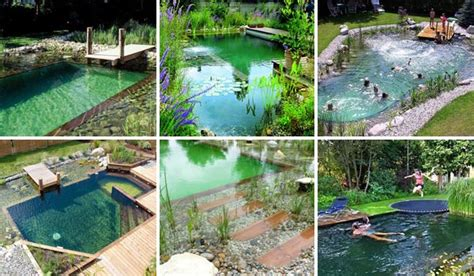 natural backyard pools 24 backyard natural pools you want to have them immediately amazing diy interior