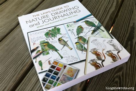 libro keeping a nature journal inspiring tools for a nature artist blog she wrote