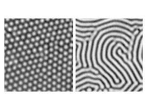 pattern formation by interacting chemical fronts turing patterns feature chemistry world