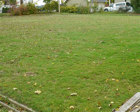 Lawn Tips Archives Emil Yedowitz Lawn Tips Archives Emil Yedowitz Landscaping And