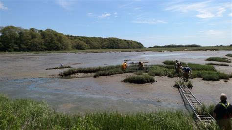 rescue plymouth two rescued after getting stuck in plymouth mud flats