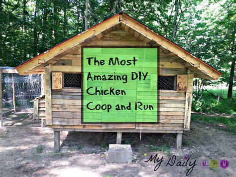 the most amazing diy chicken coop and run mydailymom
