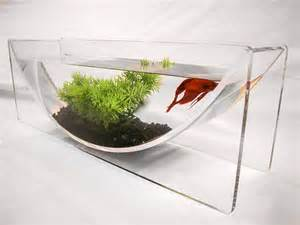 Go Back > Gallery For > Modern Fish Bowls