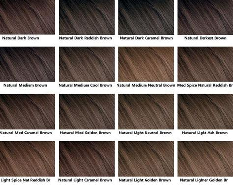 Different Shades Of Brown Hair Color Hair Obsession