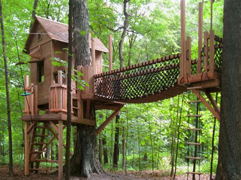 backyard tree house kits tree houses for kids austintreehouses com page 3