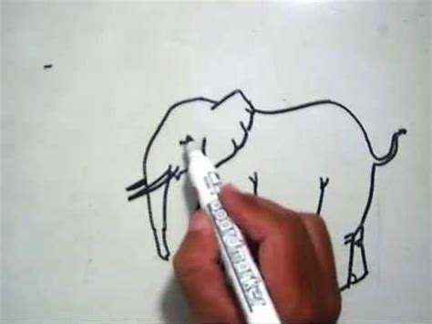 tutorial menggambar gajah how to draw a cow cara menggambar sapi doovi