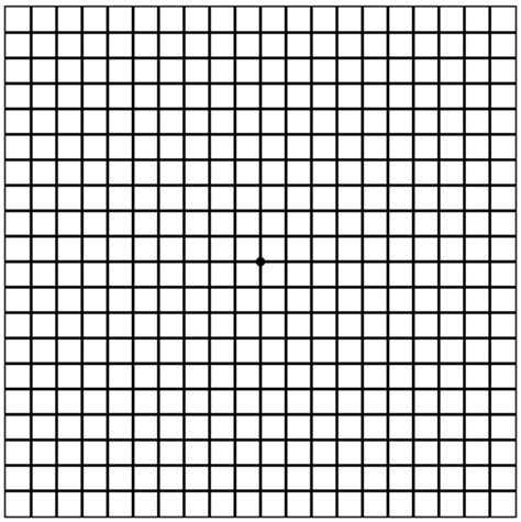 amsler grid prevent blindness
