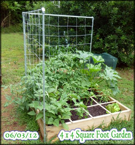 build a square foot garden wired how to wiki hometalk building our first sfg square foot garden