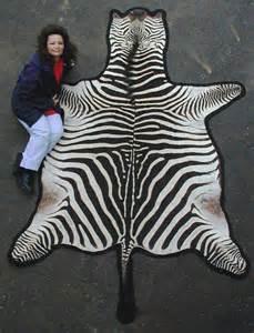 zebrafell teppich lewis and associates zebra skin rug