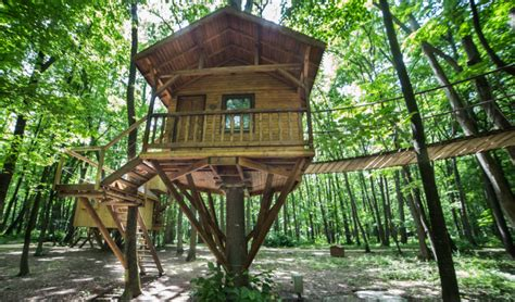 Treehouse Floor Plans by Top 7 Sources Of Treehouse Plans You Need To Visit
