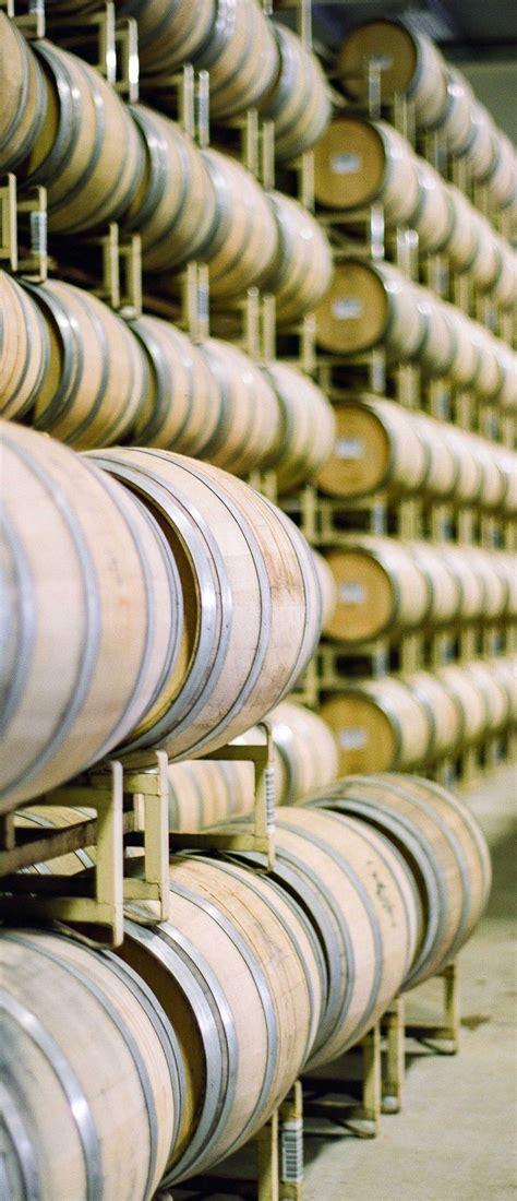 how oak barrels affect the taste of wine wine folly 58 best wine education images on pinterest wine