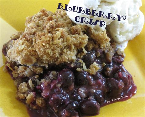 blueberry crisp a simple summer pleaser yonder wild