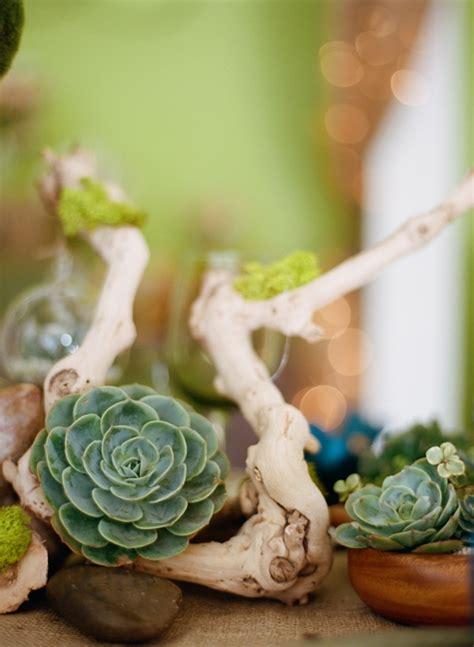 succulent decor 55 happywedd