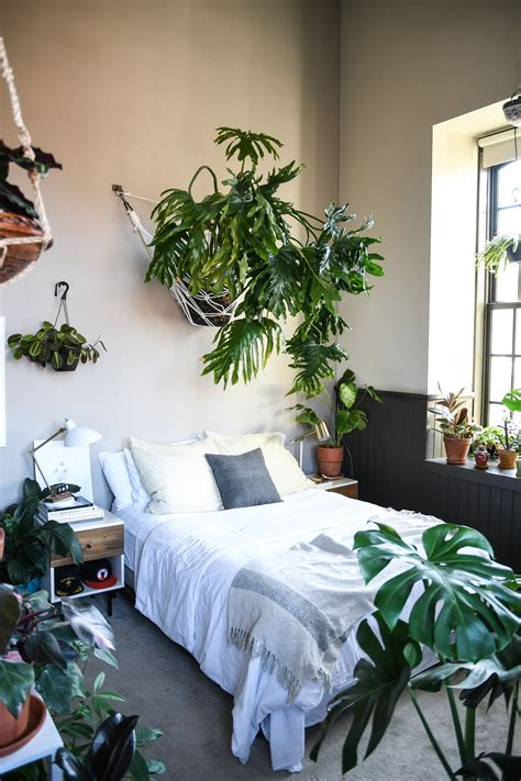 bedroom with plants a baltimore loft filled floor to ceiling with plants