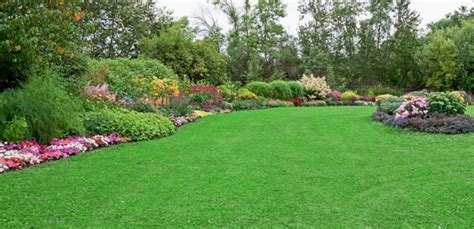 greater lansing lawn care redwood landscaping lawn