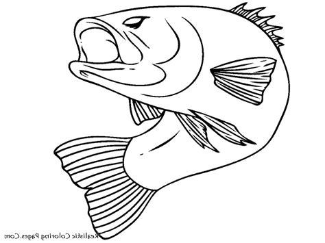 where can you print coloring pages fish coloring pages you can print printable free coloring