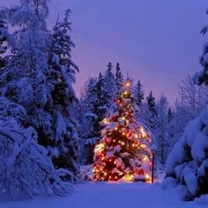 8tracks radio falling snow and christmas lights 14