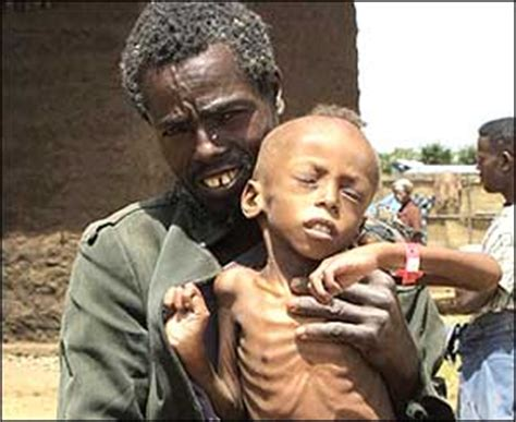 imagenes impactantes de hambre en africa bbc mundo im 225 genes conozca m 225 s sobre el hambre