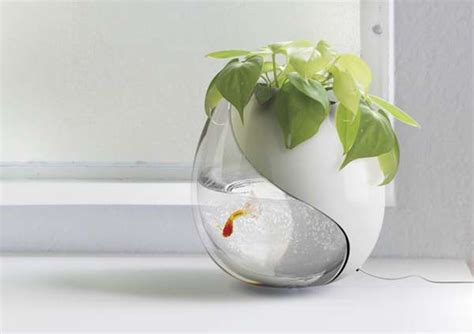 Plant Growing Aquariums Planter And Fish Bowl Fish Tank Planter