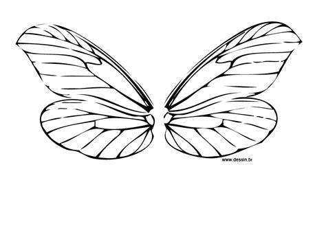 butterfly wings coloring page fairy to tattoo
