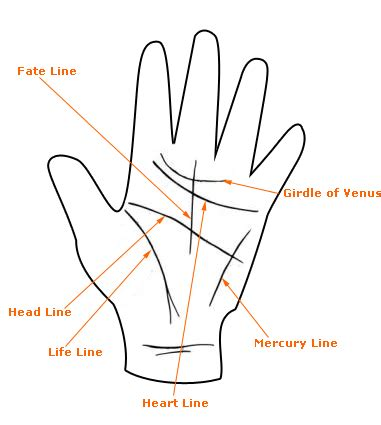 lines in palmistry reading major hairstyles lines in the palmistry