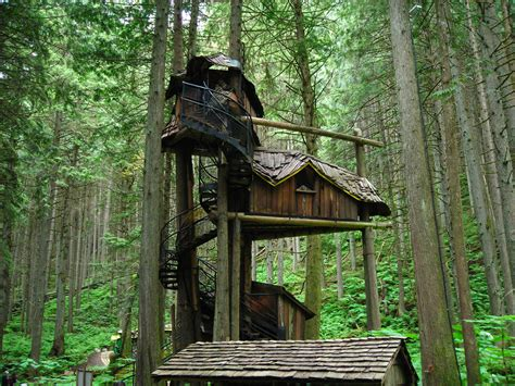 Building A Small Cabin In The Woods by Pictures Of Tree Houses And Play Houses From Around The
