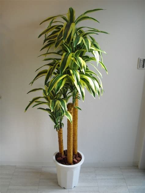 where can i purchase artificial trees on cape cod valencia rakuten global market artificial plants happiness tree
