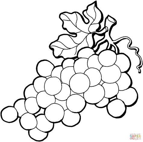Grapes Coloring Pages To Print by Grapes Coloring Page Coloring Home