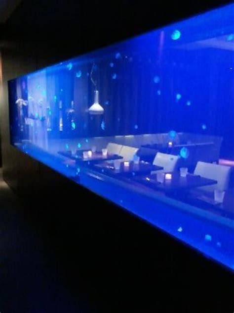 Fish Tank Bed Jelly Fish Tank Picture Of Steak 954 Fort Lauderdale