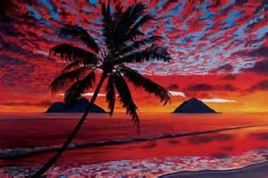 Tropical Beach Wall Murals hawaii art paintings