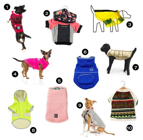 design milk holiday gift guide dog milk holiday gift guide stylish sweaters coats and