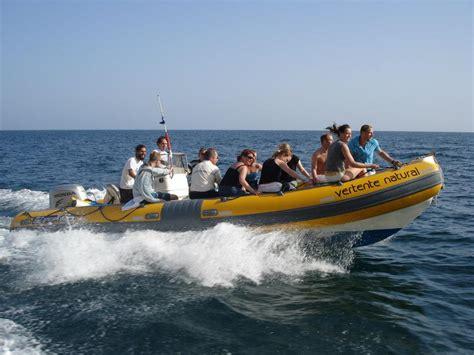 pt boat tour observa 231 227 o de golfinhos em sesimbra seabookings