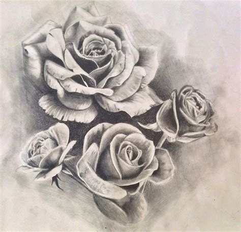 rose drawing tattoo roses design drawing by pufferfishcat deviantart