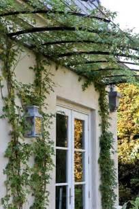 Metal Garden Arbors And Trellises Best 25 Metal Trellis Ideas On