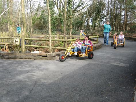 theme park north west greenwood forest park a wood based theme park in north