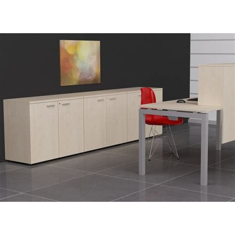 Office Cabinets With Doors Storage Cabinet With Doors Office Furniture Deskandsit