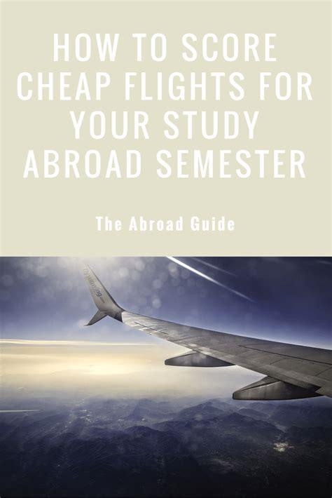 find cheap flights   study  semester