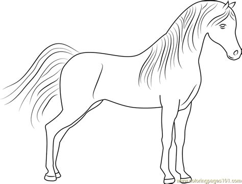 cute printable coloring pages horses cute best free