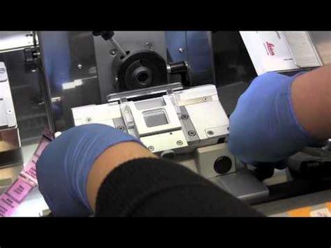 cryo sectioning cryosectioning 2 machine preparation youtube