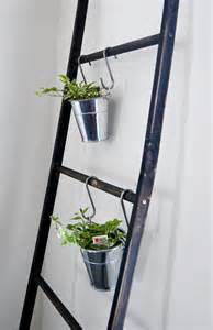 easy apartment plants ladders everywhere mas means more
