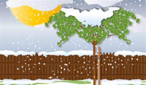 Garten Pflanzen Januar by Krankheiten Und Sch 228 Dlinge Das Ist Im Januar Im Garten Zu
