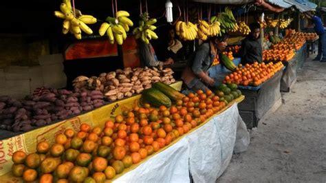 Eceran Minyak Goreng Bimoli jeruk keprok soe ntt idola di istana presiden halaman 2