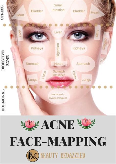 mapping acne best 25 mapping ideas on pimple mapping skin mapping and pimple mapping