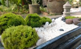 white sand mini zen garden diy zen
