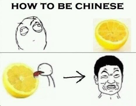 How To Create Funny Memes - image gallery lemon meme