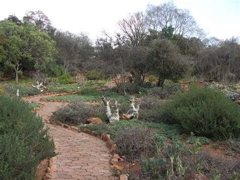 Botanical Gardens Pretoria File South Africa Pretoria National Botanical Gardens03 Jpg